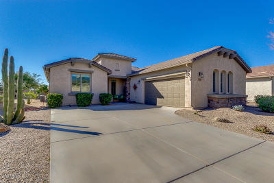 San Tan Valley Single Family Home For Sale: 663 W Bismark Street