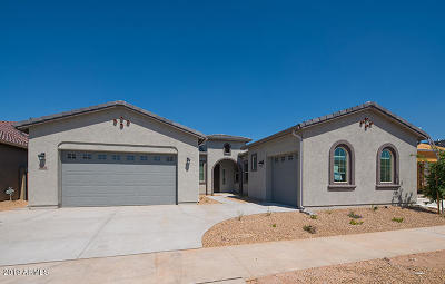 Mesa Single Family Home For Sale: 9746 E Thornbush Avenue