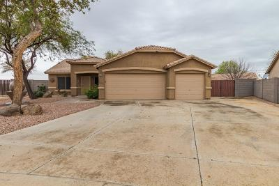 San Tan Valley Single Family Home For Sale: 39566 N Cumberland Drive