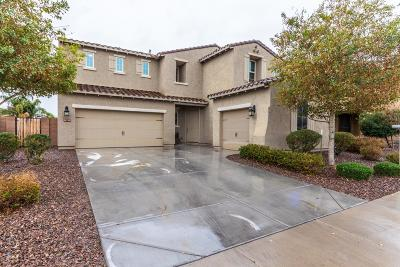 Queen Creek Single Family Home For Sale: 4479 W South Butte Road