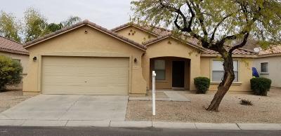 Mesa Single Family Home For Sale: 9028 E Obispo Avenue