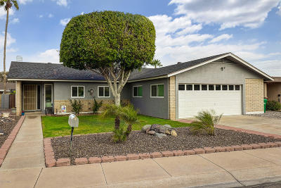 Litchfield Park Single Family Home For Sale: 421 S Lila Circle
