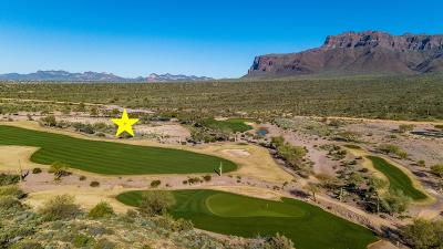 Gold Canyon Residential Lots & Land For Sale: 9377 E Canyon View Trail