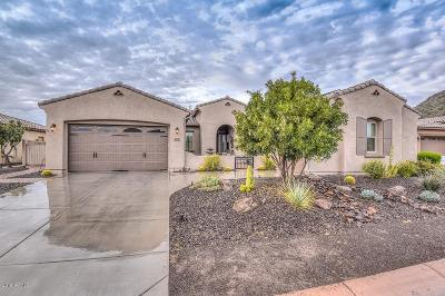 Peoria Single Family Home For Sale: 12752 W Calle De Pompas