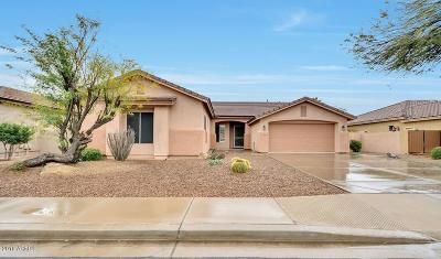 Chandler Single Family Home For Sale: 2221 E Indian Wells Drive