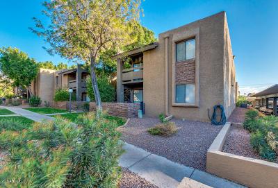 Phoenix Rental For Rent: 3825 E Camelback Road #159
