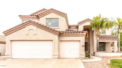 Chandler Single Family Home For Sale: 1090 W Longhorn Drive