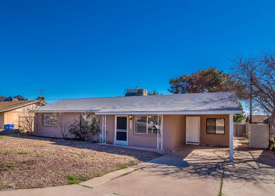 Phoenix Single Family Home For Sale: 1219 E Christy Drive