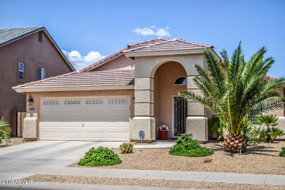 Goodyear Single Family Home For Sale: 16808 W Mesquite Drive