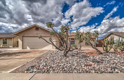 Mesa Single Family Home For Sale: 624 S 75th Street