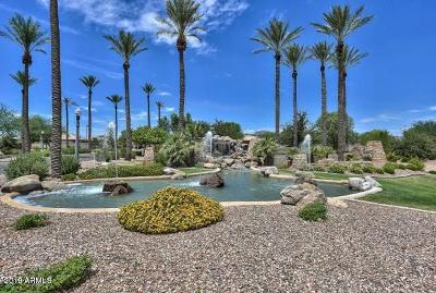 Litchfield Park Residential Lots & Land For Sale: 18018 W Rancho Court