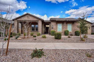 Queen Creek Single Family Home For Sale: 22334 E Rosa Road