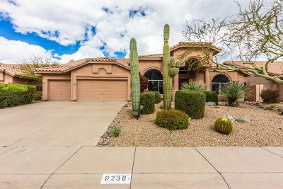 Scottsdale Single Family Home For Sale: 9238 E Palm Tree Drive
