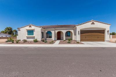 Litchfield Park Single Family Home For Sale: 14200 W Village Parkway #2288