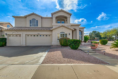 Tempe Single Family Home For Sale: 7441 S Hazelton Lane