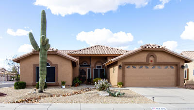 Peoria Single Family Home For Sale: 8788 W Sierra Pinta Drive