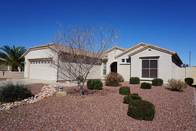 Chandler Single Family Home For Sale: 3042 E Peach Tree Drive