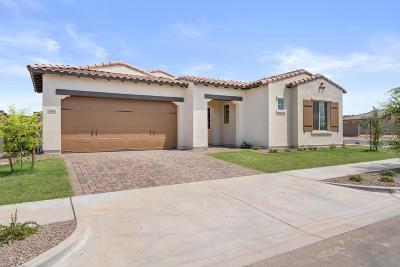 Phoenix Single Family Home For Sale: 1944 W Union Park Drive