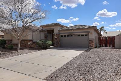 Queen Creek Single Family Home For Sale: 18501 E Pine Valley Drive