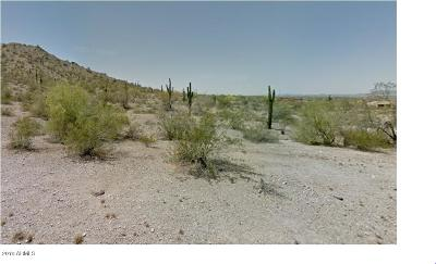 Goodyear Residential Lots & Land For Sale: 9520 S Krista Drive