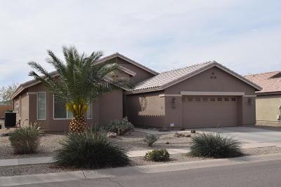 Casa Grande Single Family Home For Sale: 2603 E Santa Maria Drive