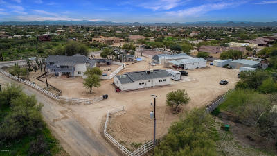 Cave Creek Single Family Home For Sale: 6748 E Lone Mountain Road