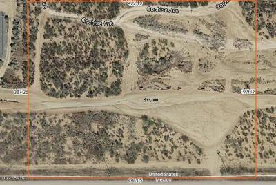 Douglas  Residential Lots & Land For Sale: Xxx E International Avenue