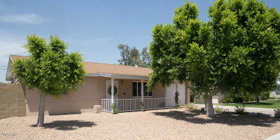 Phoenix Single Family Home For Sale: 2250 E Montecito Avenue