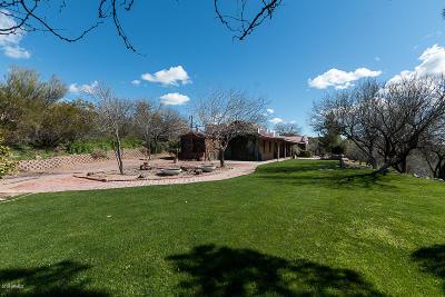 Wickenburg Single Family Home For Sale: 55250 Jack Burden Road