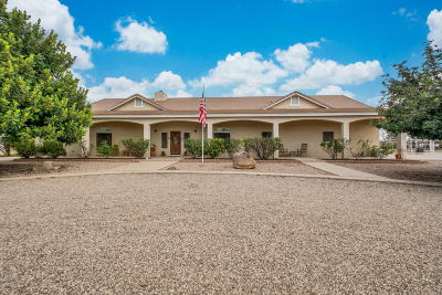 San Tan Valley Single Family Home For Sale: 39791 N Country Lane