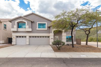 Phoenix Single Family Home For Sale: 2003 E Mariposa Grande Street