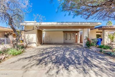 Mesa Single Family Home For Sale: 560 E Royal Palms Drive