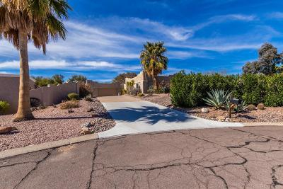 Fountain Hills Single Family Home For Sale: 11422 N Cameron Court