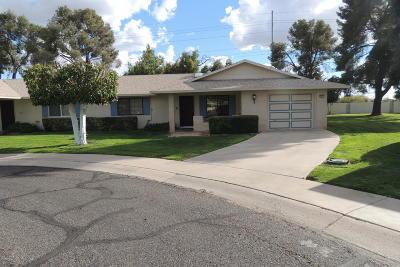 Sun City Gemini/Twin Home For Sale: 10917 W Caron Drive
