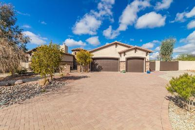 Gold Canyon Single Family Home For Sale: 4020 S Last Chance Trail