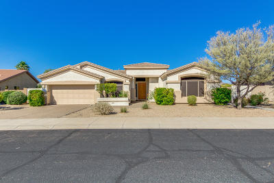 Goodyear Single Family Home For Sale: 17706 W Ocotillo Avenue