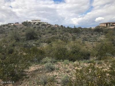 Peoria Residential Lots & Land For Sale: 264xx N 92nd Avenue
