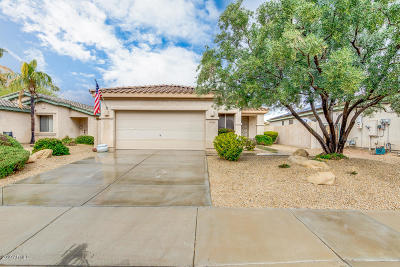 Goodyear Single Family Home For Sale: 14354 W Verde Lane
