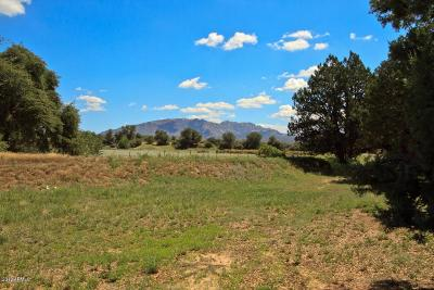 Yavapai County Single Family Home For Sale: 4500 N Tonto Road
