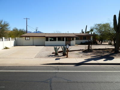 Apache Junction Single Family Home For Sale: 1115 S Royal Palm Road