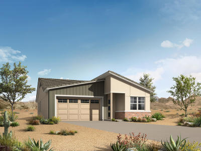 Chandler Single Family Home For Sale: 3061 S Valerie Drive
