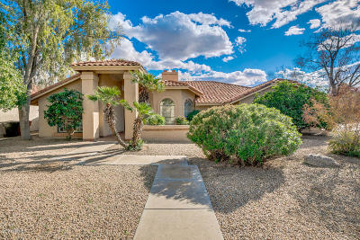 Scottsdale Single Family Home For Sale: 8501 E San Jacinto Drive