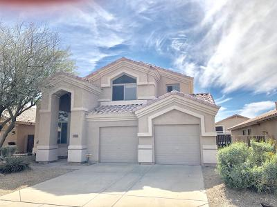 Cave Creek Single Family Home For Sale: 29442 N 49th Place