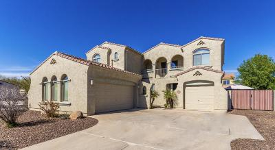 Queen Creek Single Family Home For Sale: 18446 E Peachtree Boulevard