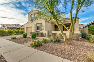 Mesa Single Family Home For Sale: 10548 E Kinetic Drive