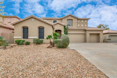 Chandler Single Family Home For Sale: 1691 E Redwood Place