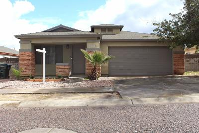 Phoenix Single Family Home For Sale: 7223 S 2nd Lane