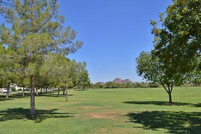 Phoenix Rental For Rent: 522 W Tierra Buena Lane