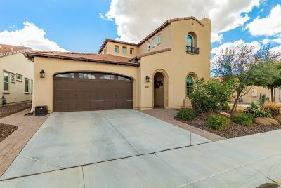 San Tan Valley Single Family Home For Sale: 1723 E Elysian Pass
