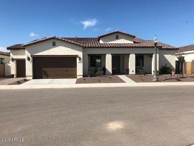 Litchfield Park Single Family Home For Sale: 14200 W Village Parkway #2044
